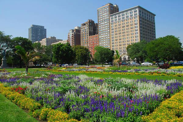 Photograph - Lincoln Park Gardens by Lynn Bauer
