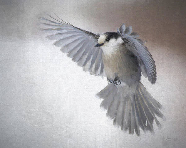 Digital Art - Little Gray Angel by Gerry Sibell