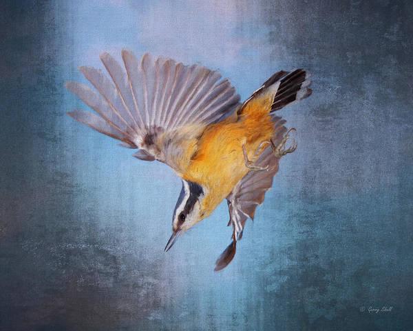 Digital Art - Little Kamikaze Pilot by Gerry Sibell