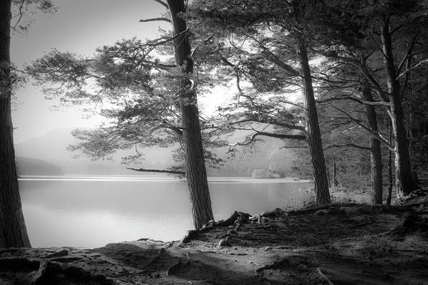 Wall Art - Photograph - Loch An Eilein by Dorit Fuhg