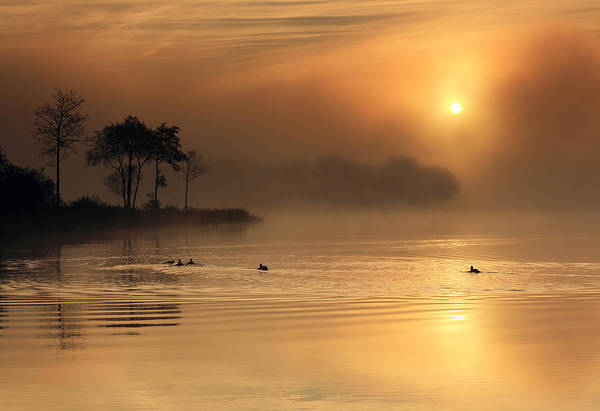 Photograph - Loch Ard Morning Glow by Grant Glendinning