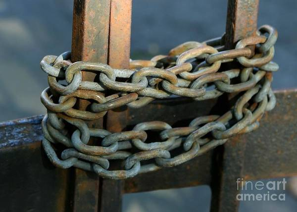 Chain Link Photograph - Locked Tight by Carol Groenen