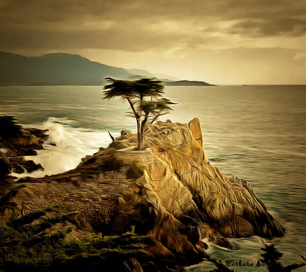 Wall Art - Painting - Lone Cypress Detail 2 by Barbara Snyder