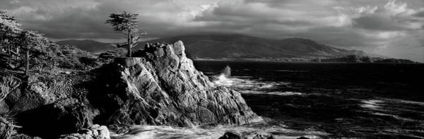 Monterey Bay Photograph - Lone Cypress On The Coast, Pebble by Panoramic Images