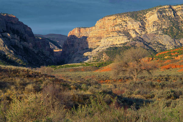 Dinosaur National Park Photograph - Looking Up Pool Creek Canyon, Dinosaur by Timothy Herpel