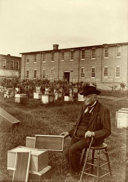Bee Hive Photograph - Lorenzo Langstroth by American Philosophical Society