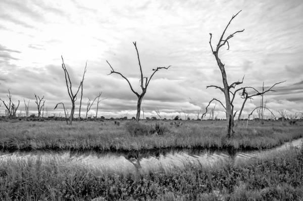 Photograph - Louisiana Coastal Graveyard by Andy Crawford