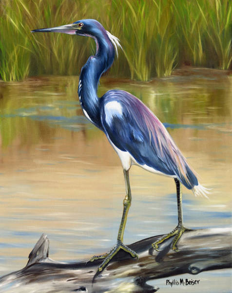Wall Art - Painting - Louisiana Heron by Phyllis Beiser