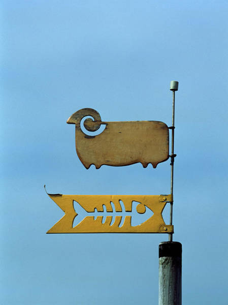 Weather Vane Photograph - Low Angle View Of Weather Vane by Panoramic Images