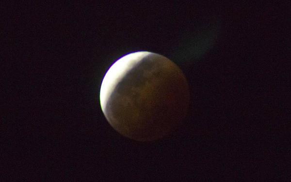 Photograph - Luna Eclipse by Debbie Cundy