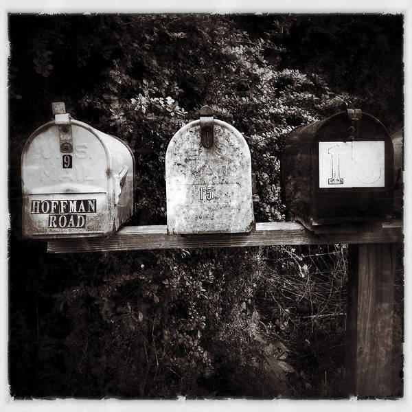 Photograph - Mailboxes by Natasha Marco