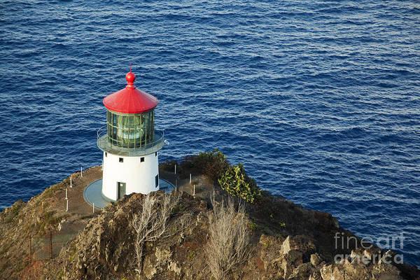 Photograph - Makapu'u Lighthouse by Charmian Vistaunet