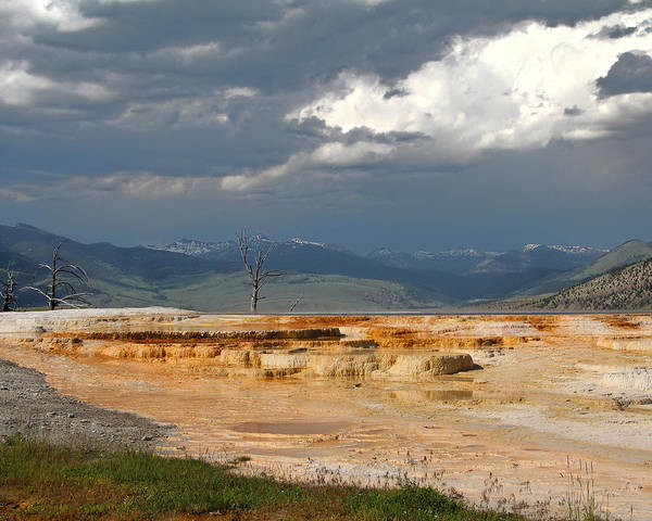 Photograph - Mammoth Hot Springs by Jemmy Archer