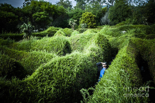Photograph - Man Lost Inside A Maze Or Labyrinth by Jorgo Photography - Wall Art Gallery