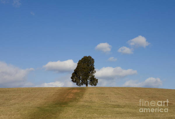 Department Of The Army Wall Art - Photograph - Manassas National Battlefield Park by Jason O Watson