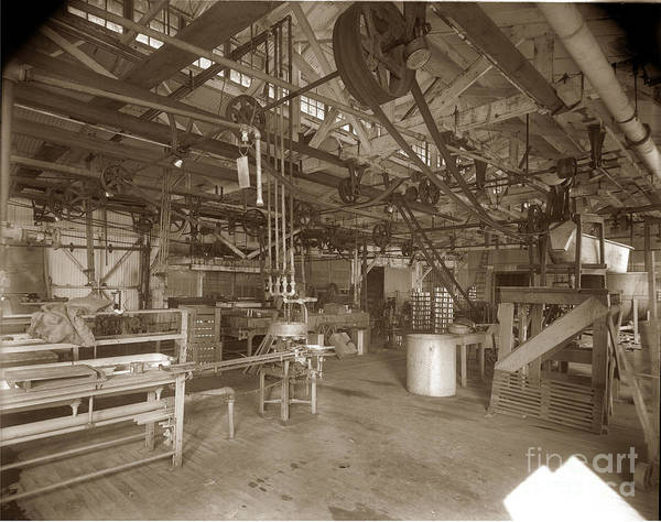 Photograph - Manteca Packing Company California Circa 1920 by California Views Archives Mr Pat Hathaway Archives
