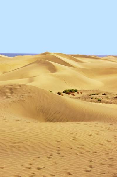 Wall Art - Photograph - Maspalomas Sand Dunes. by Mark Williamson/science Photo Library