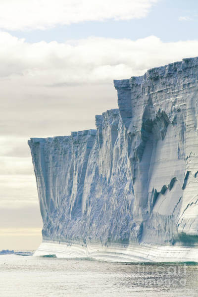 Wall Art - Photograph - Massive Iceberg South Georgia by Yva Momatiuk John Eastcott
