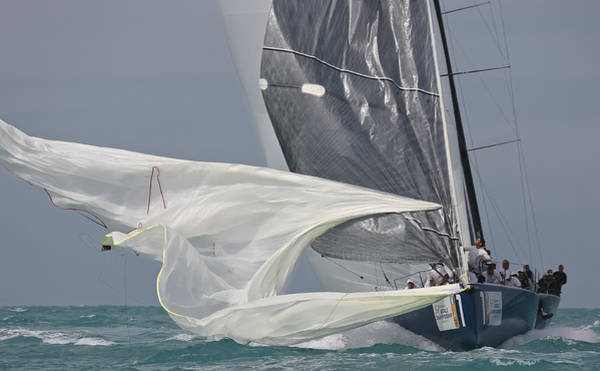 Photograph - Miami Sail Week by Steven Lapkin