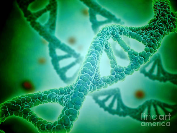 Digital Art - Microscopic View Of Dna by Stocktrek Images