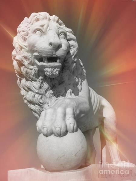 Wall Art - Photograph - Mighty Lion by Elizabeth Hoskinson