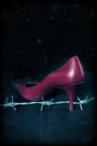 Barb Photograph - Mind Your Steps by Joana Kruse