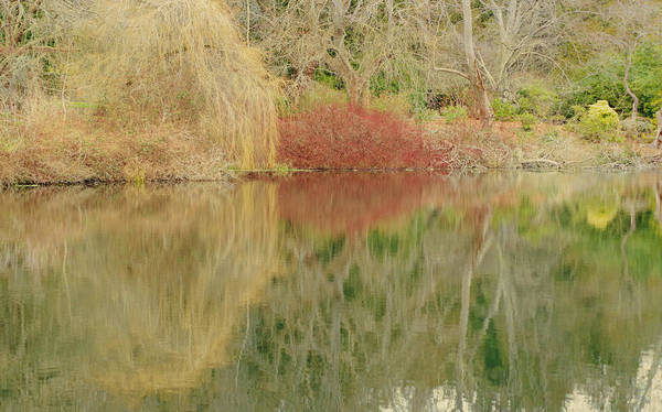 Photograph - Landscape Reflection by Marilyn Wilson