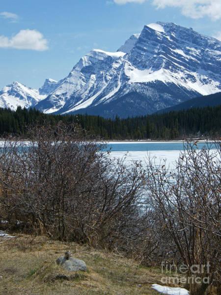 Photograph - Mistaya Lake - Canada by Phil Banks