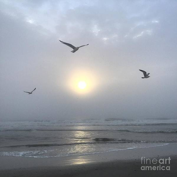 Photograph - Moment Of Grace by LeeAnn Kendall