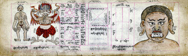 Manuscript Photograph - Mongolian Astrology by National Library Of Medicine