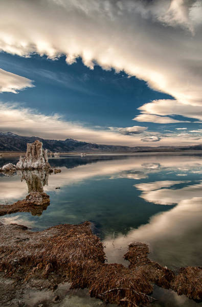 Photograph - Mono Lake by Cat Connor