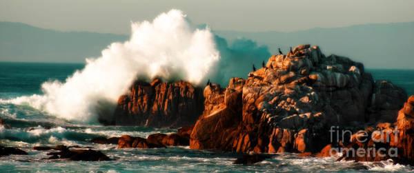 Monterey Landscapes Art Print