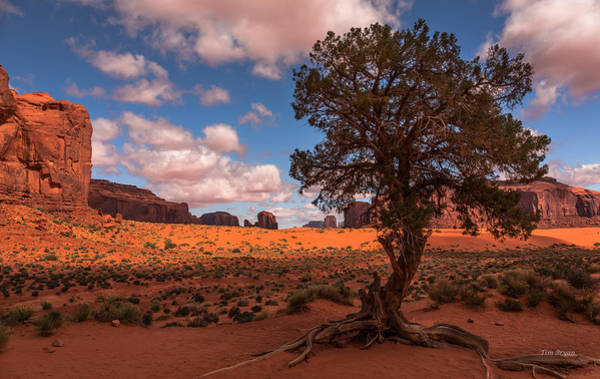 Photograph - Monument Valley Morning by Tim Bryan