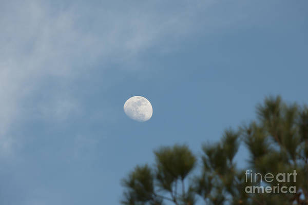 Photograph - Moon Landing by Dale Powell