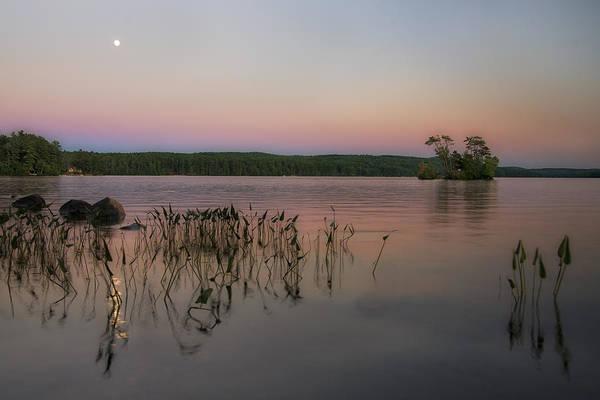 Photograph - Moon Over Moose by Darylann Leonard Photography