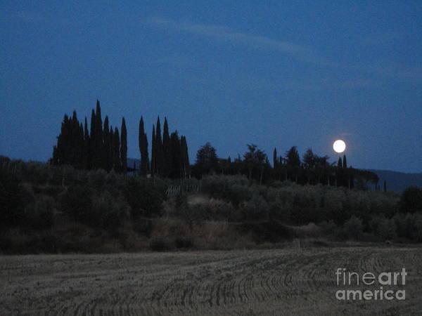 Photograph - Moonshine In Arezzo by Alessandra Di Noto