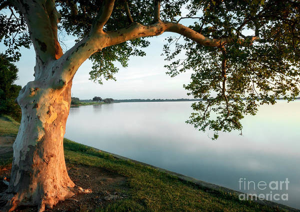 Photograph - Morning By The Lake by Richard Smith