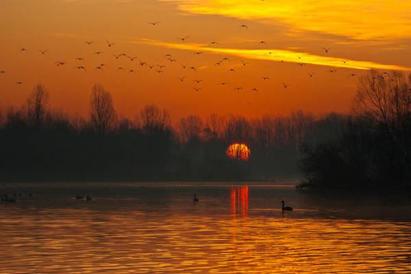 Morning Over River Art Print