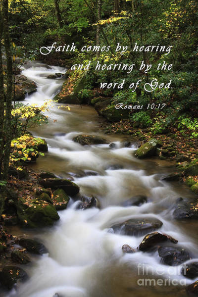 Photograph - Mountain Creek With Scripture by Jill Lang