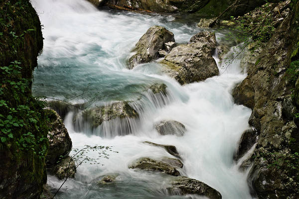 Photograph - Mountain Stream by Ivan Slosar