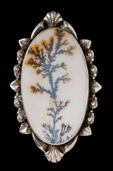 Geodes Photograph - Mounted India Dendritic Agate by Natural History Museum, London/science Photo Library