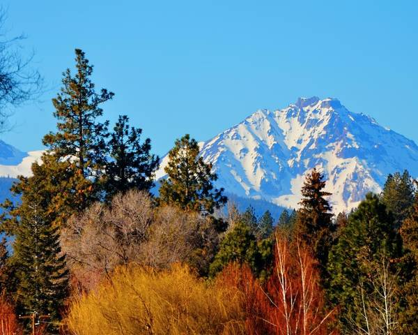 Photograph - Mt Bachelor 21620 by Jerry Sodorff
