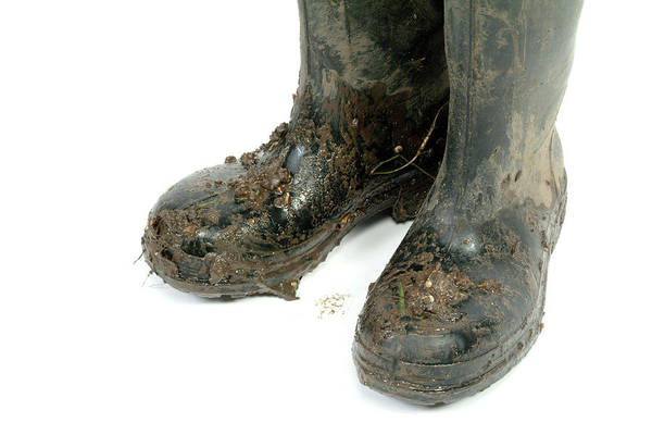 Wall Art - Photograph - Muddy Wellington Boots by Natural History Museum, London/science Photo Library