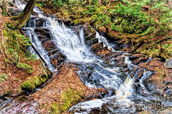 Photograph - Muskoka Waterfall by Les Palenik