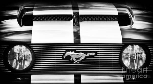 Ford Motor Company Photograph - Mustang Front Monochrome  by Tim Gainey