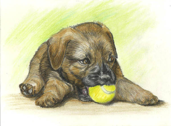 Chien Drawing - My Ball by Daniele Trottier