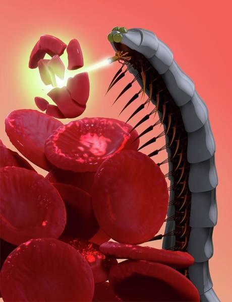 Nano-technology Wall Art - Photograph - Nanobot Destroying Blood Clot by Tim Vernon