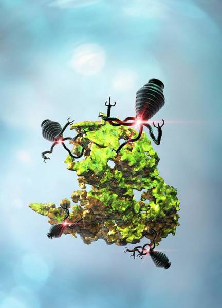Wall Art - Photograph - Nanobots Attacking Cancer Cell by Victor Habbick Visions/science Photo Library