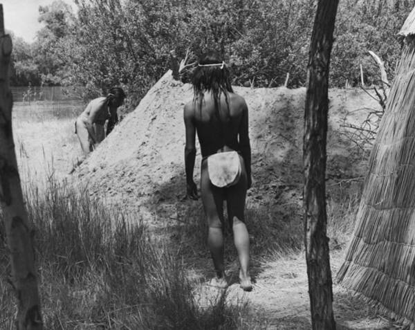 Photograph - Native American Sweat Lodge by Underwood Archives Onia