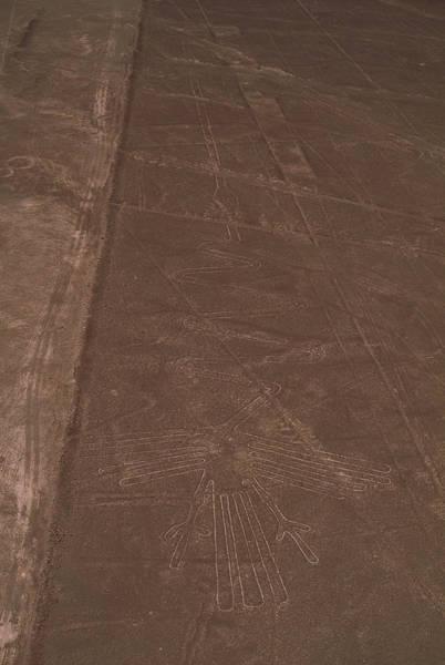 Loon Photograph - Nazca Lines by David Nunuk/science Photo Library